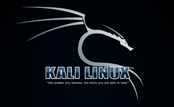 Kali linux first run