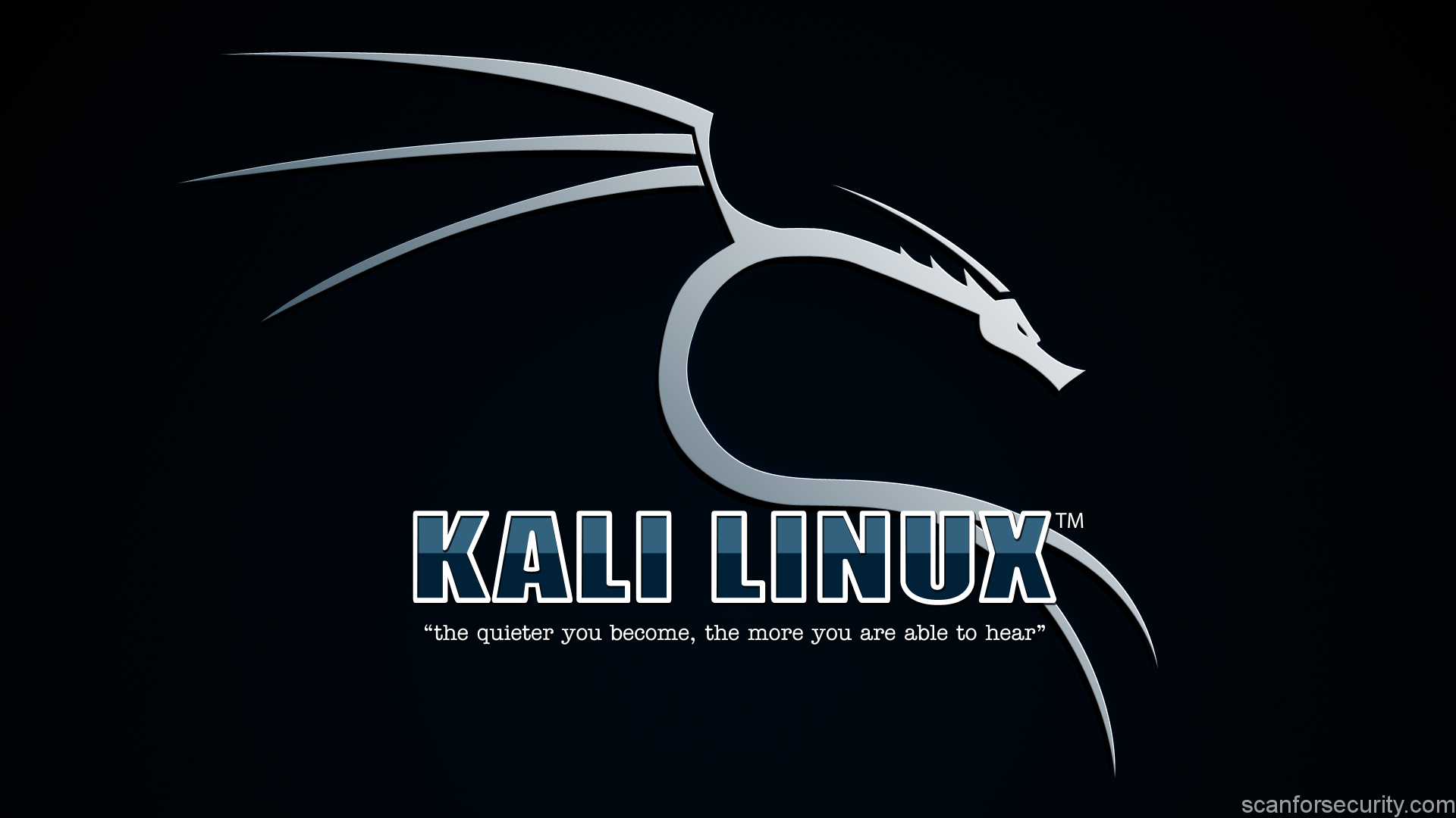 Kali Linux: First run - Scan For Security