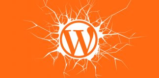 WordPress Themes Vulnerabilities